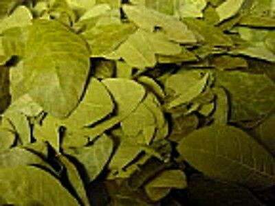 Rose Leaves - Potpourri, Nature Crafts - 12 - 6 - 4 - 2 oz - 2oz is about 3 cups