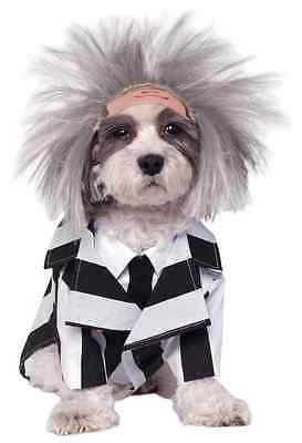 Beetlejuice Movie Ghost Striped Suit Fancy Dress Halloween Pet Dog Cat Costume