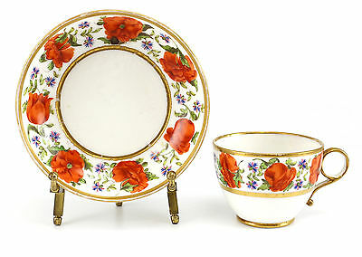Continental Porcelain Cup & Saucer, Early 19th Century Hand painted Gilt Floral