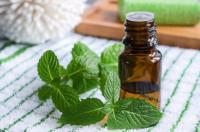 Peppermint (Japanese) Essential Oil...9 Sizes..10ml - Gallon( Mentha Arventis)