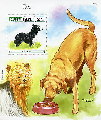 Guinea-Bissau 2015 MNH Dogs 1v SS Pets Border Collie Yorkshire Terrier Retriever