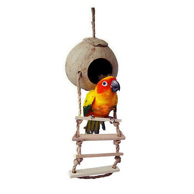 Pet Parrot Birds Parakeet Swing Natural Coconut Shell Nest Ladder Toy Cage Toys