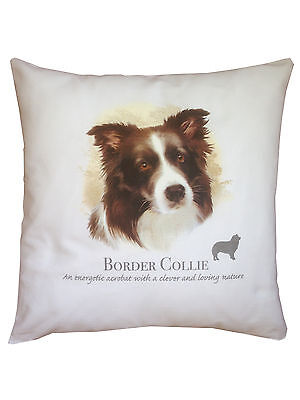 Border Collie Breed of Dog Cotton Cushion Cover with Story - Perfect Gift