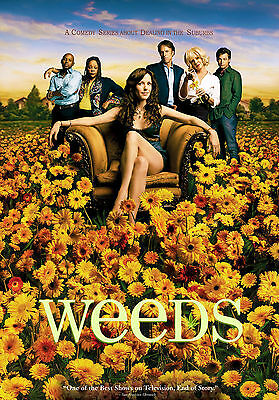 Weeds TV Series Television Poster