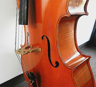 Gagliano Gennaro ( Januarius ) 1742, 4/4 Size Cello, Master Level