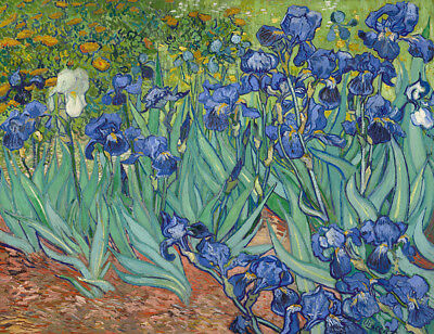 Irises by Vincent Van Gogh, Hand Painted Oil Painting Reproduction on Canvas