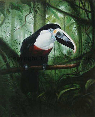 """Toco Toucan, Original Wild Life Handmade Oil Painting on Canvas, 30"""" x 36"""""""