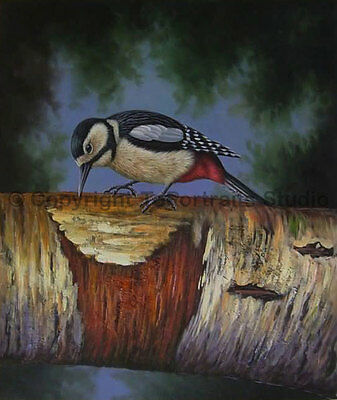 "Hairy Woodpecker, Original Wild Life Handmade Oil Painting on Canvas, 30"" x 36"""