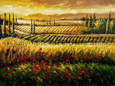 "Vineyard With Poppy & Wheat Fields, Original Landscape Oil Painting , 34"" x 26"""