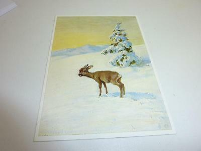 """vintage blank  greeting cards  ARS SACRA """"Bamby in snow"""" #1304#"""