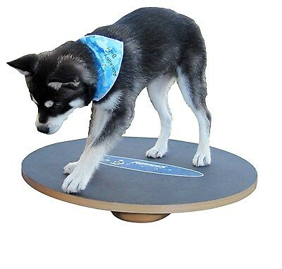 Dog Agility Wobble Board Fitness Equipment Puppy See Saw Gear Rocker Exercise