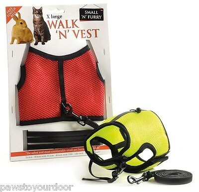 Rabbit & cat harness & lead vest set x large Walk 'n' Vest
