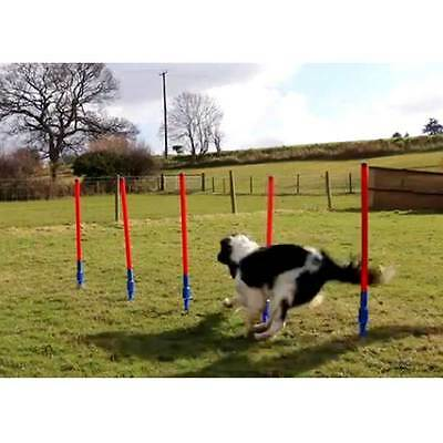 Rosewood Lightweight and Compact Dog Agility Slalom - Includes Carry Bag