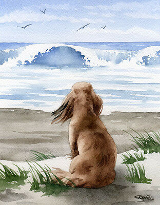LONG HAIRED DACHSHUND AT THE BEACH Watercolor Dog ART Print Signed by Artist DJR