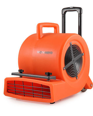 WORK HERO SC900 3 Speed 1HP 900W Commercial Carpet Dryer Blower Air Mover SC-900