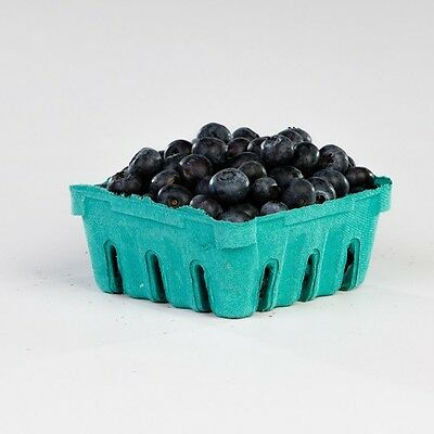 Half Pint Pulp Berry Trays 600 count