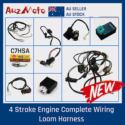 50/70/90/110/125cc 4 Stroke Engine Complete Wiring Loom Harness Thumpster Atomik