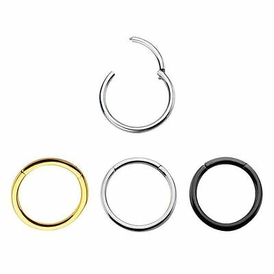 New 16G Stainless Steel Hinged Clicker Septum Segment Hoop Ring Ear Lip Nose