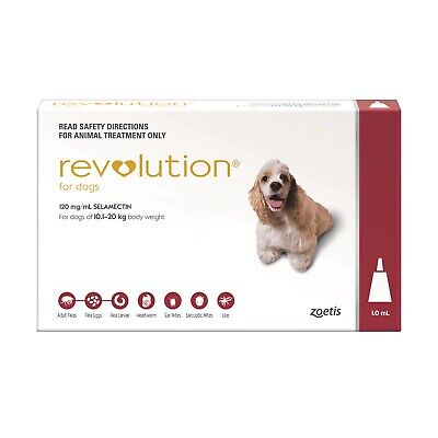 Revolution Flea Control for Dogs 10.1-20kg - Red Pack