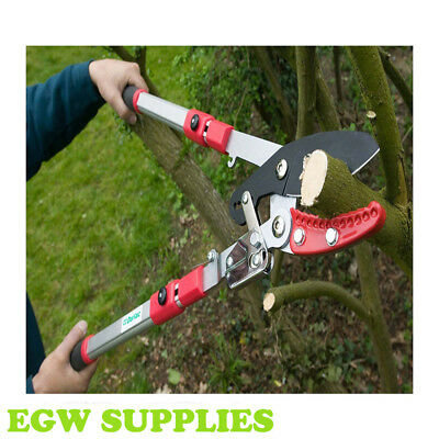 New Heavy Duty Telescopic Ratchet Loppers Long Reach Tree Pruning Darlac  DP974