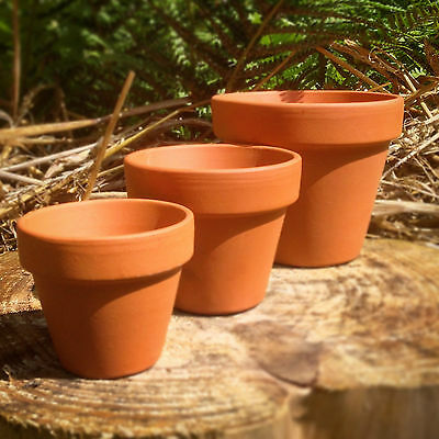 Terracotta Pots 1~50 pcs - Mini, S, M, L & XL Planters, Plant Pots - Crafts