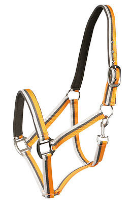 PFIFF German Padded Synthetic Lined Headcollar Pony, Cob or Full