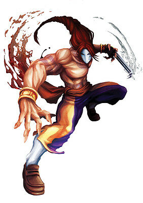 STICKER AUTOCOLLANT POSTER A4 JEUX VIDEO STREET FIGHTER 4.PERSONNAGE RYU DONO.