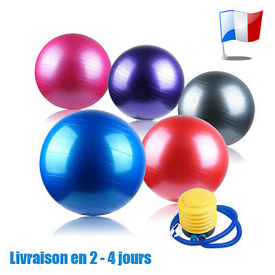 Boule de Yoga Ballons de Gymnastique Gym Exercise Ball Pilates Fitness 65 CM