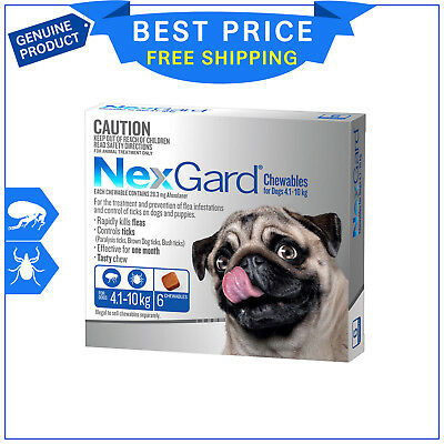 NEXGARD BLUE Pack For Dogs 4.1 to 10 Kg 6 Chews Flea and Tick Treatment NEXGUARD