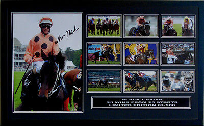 Black Caviar Luke Nolen Signed Limited Edition Framed Memorabilia