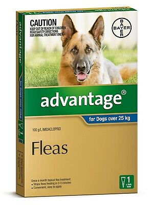 Advantage Flea Control for Dogs Over 25kg - Single Dose