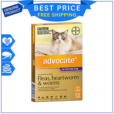 ADVOCATE for Cats Over 4 Kg PURPLE 6 Pipettes + FREE 2 Pipettes by Bayer