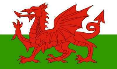 WALES DRAGON FLAG - WELSH NATIONAL FLAGS - Hand, 3x2, 5x3, 8x5 Feet