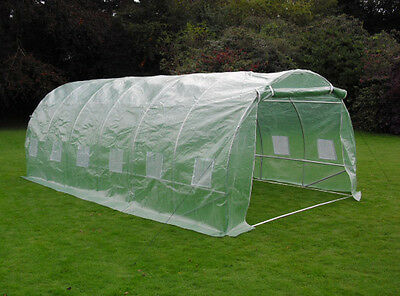 6m Walk-In Reinforced Strong Garden Plant Polytunnel Poly Tunnel Greenhouse