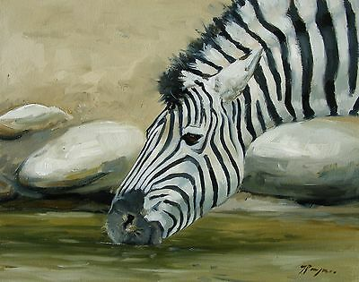 Original Oil painting - wildlife art - zebra portrait  - by Uk artist j payne