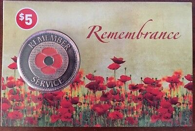 *NEW 2015**  Remember Penny Poppy *Remembrance Day