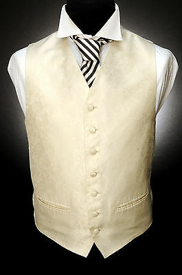 W - 543 Traditional Ornate Ivory Floral Formal Wedding Waistcoat