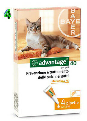 BAYER ADVANTAGE 40 mg per gatto fino a 4 kg 4 pipette ANTIPULCI ANTIPARASSITARIO