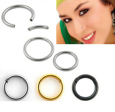 Septum Clicker Nose Ear Tragus HINGED SEGMENT RING Various Sizes Titanium Colour