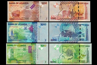 Set of 3Pcs Uganda 1000+2000+5000 Shillings,2013,P-49,P-50,P-51,Uncirculated