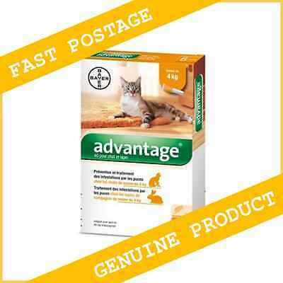 Advantage Flea Control for Cats or Kittens Under/Up to 4kg - 6 Pack
