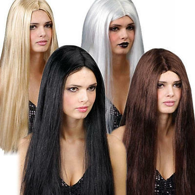 Long Straight Classic Wig Ladies Fancy Dress Halloween Womens Costume Accessory