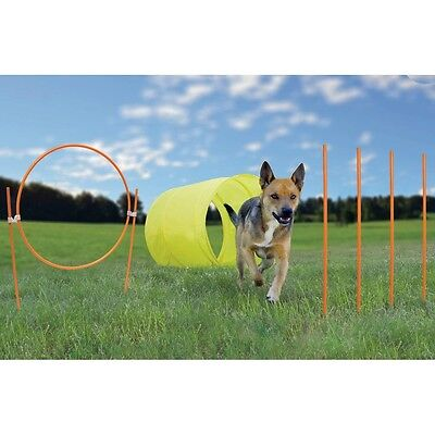 Dog Agility Starter Kit Outdoor training tunnel, hoop jump, weaves poles