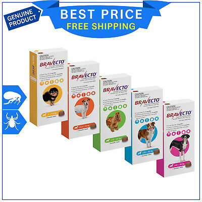 BRAVECTO for Dogs All Sizes 1 Chew flea and tick treatment for 3 months