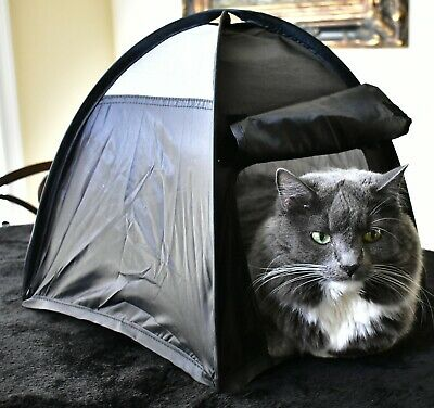 Cat or Dog Bed that pops up like a Tent- My Cats go Psycho **HELP SAVE ANIMALS**