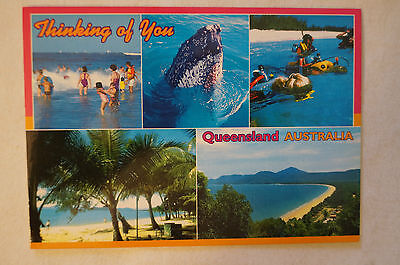 Thinking of You - Queensland - Collectable - Postcard.