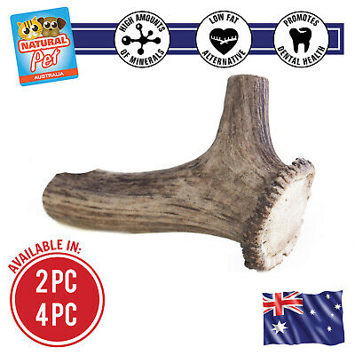 Large Deer Antler Whole Chews For Adult Dogs Puppy Dental Treat Bone Dog Treat D