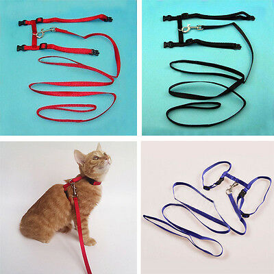 Adjustable Nylon Pet Cat Harness and Leash Kitten Belt Collar New Fashion