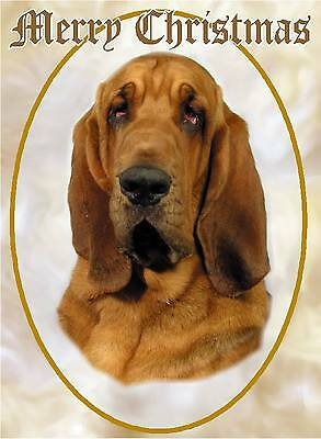 Bloodhound Dog A6 Christmas Card Design XBLOODHND-2 by paws2print