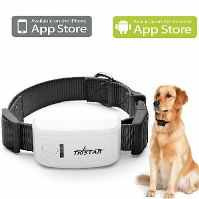 Gsm Gps Tracker Latest Pet Security Tracking Collar Call & Locate From Any Phone